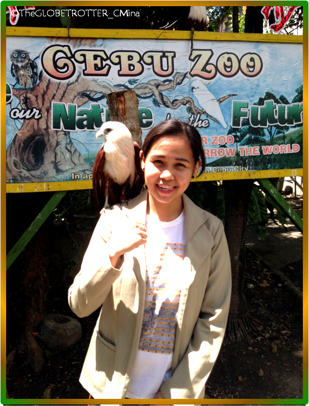 WELCOME TO CEBU ZOO!