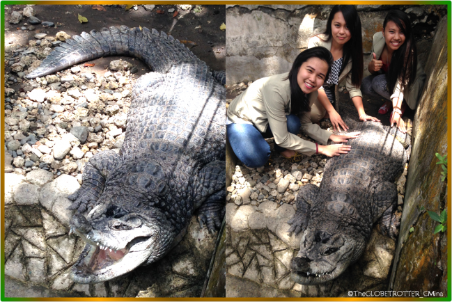 My friends and I with the our new found friend, The Crocodile.