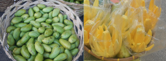 green-carabao-mangoes